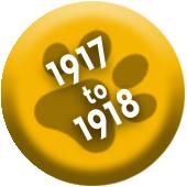 1917 1918 Button