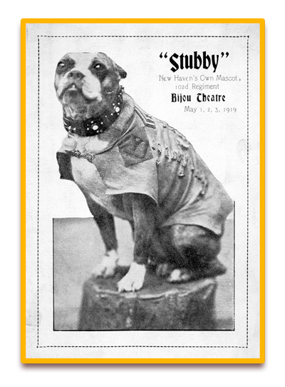Stubby as New Haven, CT Mascot