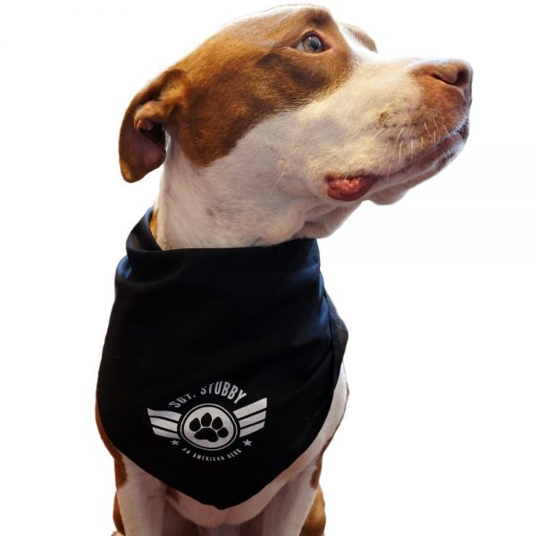 Stubby bandana on Dog